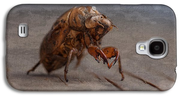 Cicada Shell Galaxy S4 Case by Tom Mc Nemar