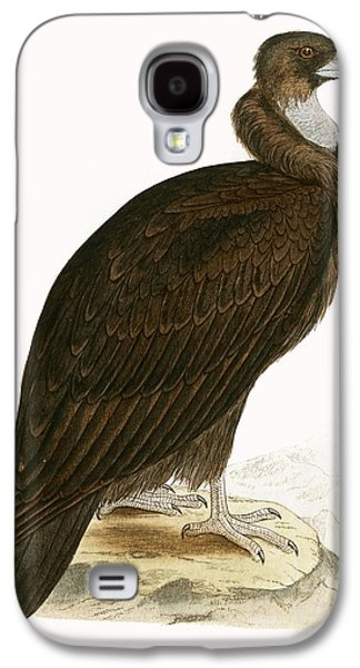 Cinereous Vulture Galaxy S4 Case by English School