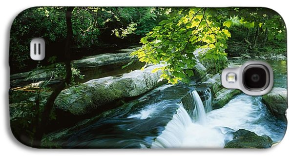 Wooden Sculpture Galaxy S4 Cases - Clare Glens, Co Clare, Ireland Galaxy S4 Case by The Irish Image Collection