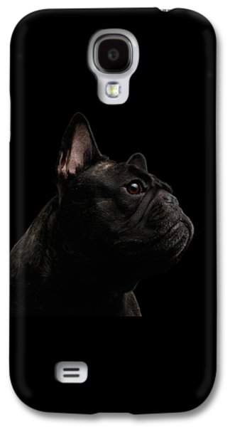 Dog Galaxy S4 Case - Close-up French Bulldog Dog Like Monster In Profile View Isolated by Sergey Taran