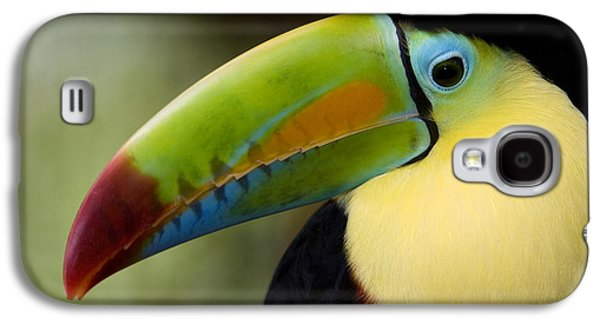 Toucan Galaxy S4 Case - Close-up Of Keel-billed Toucan by Panoramic Images