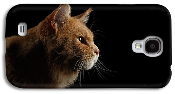 Cat Galaxy S4 Case - Close-up Portrait Ginger Maine Coon Cat Isolated On Black Background by Sergey Taran