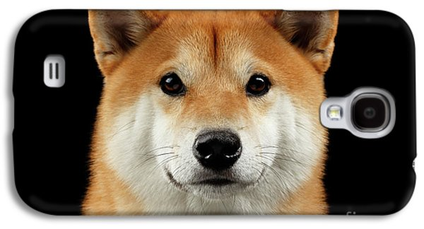 Close-up Portrait Of Head Shiba Inu Dog, Isolated Black Background Galaxy S4 Case by Sergey Taran