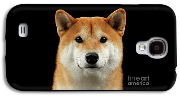 Close-up Portrait Of Head Shiba Inu Dog, Isolated Black Background Galaxy S4 Case by Sergey Taran