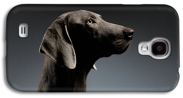 Dog Galaxy S4 Case - Close-up Portrait Weimaraner Dog In Profile View On White Gradient by Sergey Taran