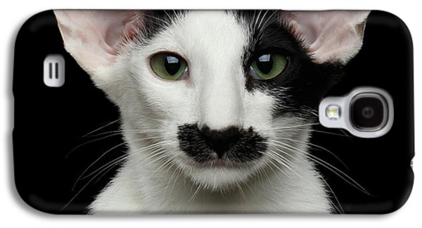 Closeup Funny Oriental Shorthair Looking At Camera Isolated, Bla Galaxy S4 Case by Sergey Taran