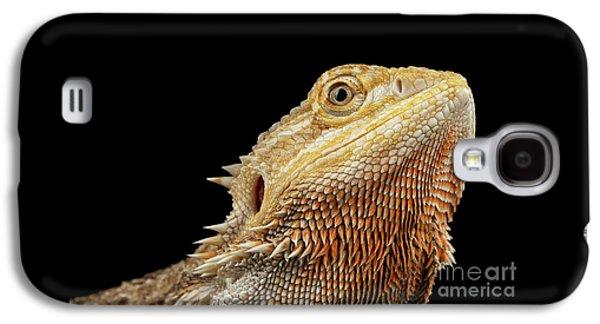 Closeup Head Of Bearded Dragon Llizard, Agama, Isolated Black Background Galaxy S4 Case