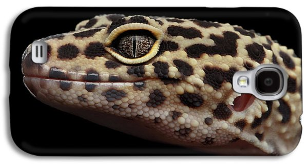 Closeup Head Of Leopard Gecko Eublepharis Macularius Isolated On Black Background Galaxy S4 Case by Sergey Taran