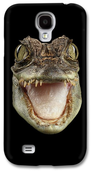 Closeup Head Of Young Cayman Crocodile , Reptile With Opened Mouth Isolated On Black Background, Fro Galaxy S4 Case by Sergey Taran