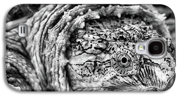 Closeup Of A Snapping Turtle Galaxy S4 Case