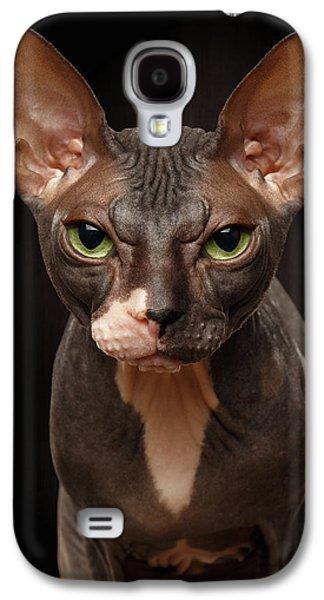 Cat Galaxy S4 Case - Closeup Portrait Of Grumpy Sphynx Cat Front View On Black  by Sergey Taran