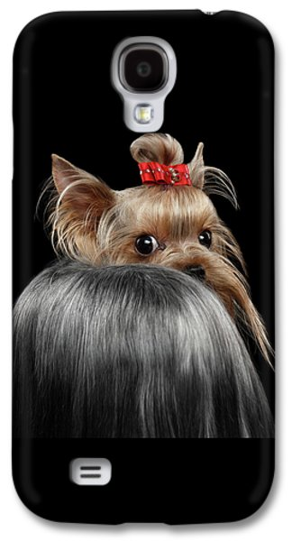 Dog Galaxy S4 Case -  Closeup Yorkshire Terrier Dog, Long Groomed Hair Pity Looking Back by Sergey Taran