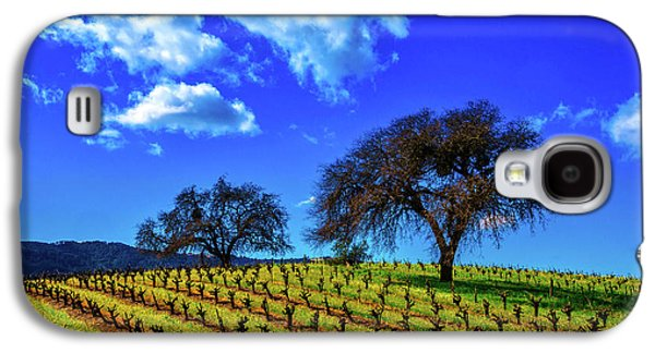 Clouds Above Vinyards Galaxy S4 Case by Garry Gay
