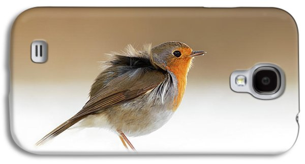 Cold Feet II - Little Red Robin In The Snow Galaxy S4 Case