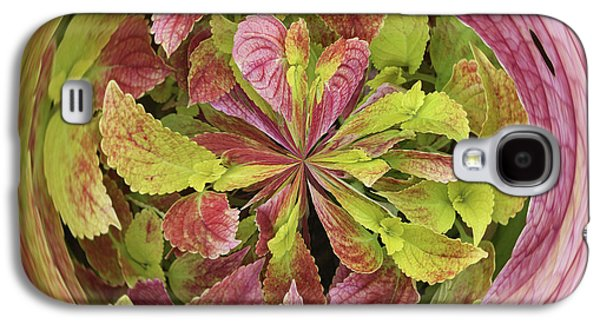 Galaxy S4 Case featuring the photograph Coleous In Orb by Bill Barber