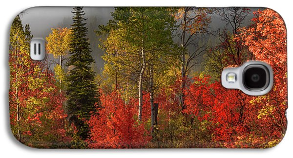 Color And Light Galaxy S4 Case by Leland D Howard