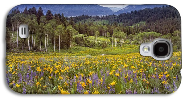Color Of Spring Galaxy S4 Case by Leland D Howard