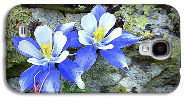 Galaxy S4 Case featuring the photograph Colorado Columbines by Karen Shackles
