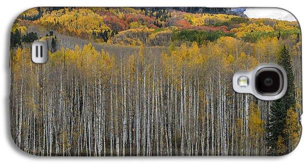 Colorado Splendor Galaxy S4 Case