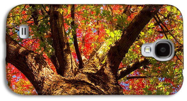 Colorful Autumn Abstract Galaxy S4 Case by James BO  Insogna