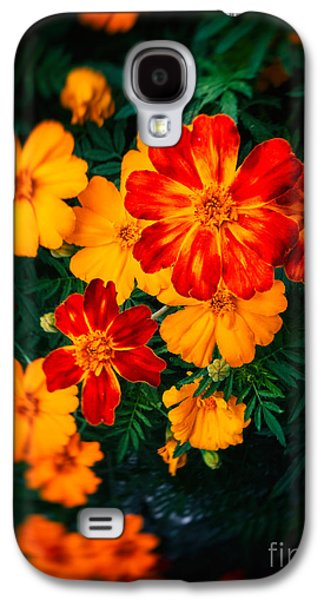 Colorful Flowers Galaxy S4 Case by Silvia Ganora