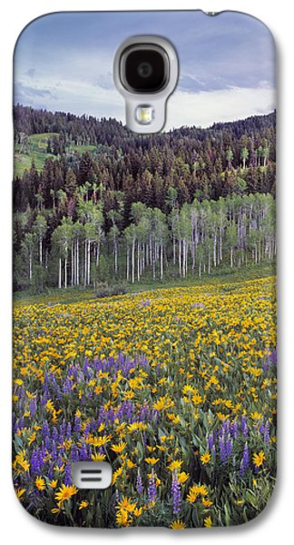 Colorful Spring Meadow Galaxy S4 Case by Leland D Howard