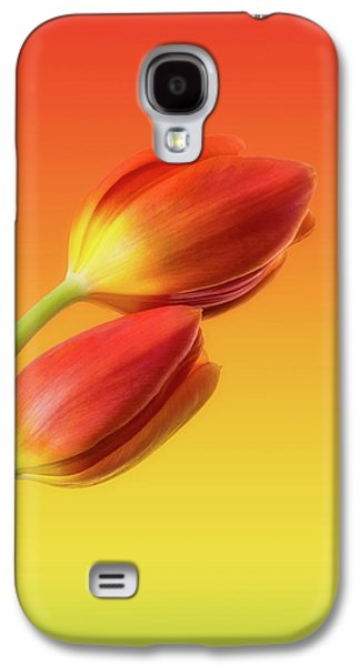 Colorful Galaxy S4 Case - Colorful Tulips by Wim Lanclus