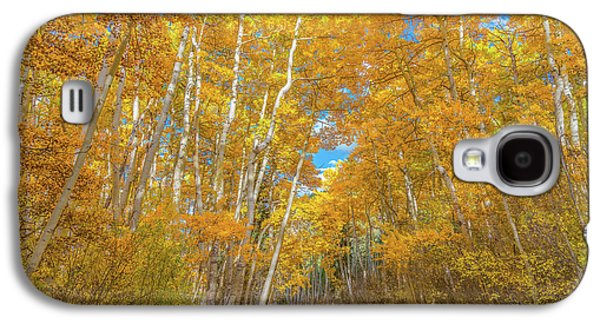 Colors Of Fall Galaxy S4 Case
