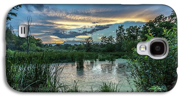 Columbia Marsh Sunset Galaxy S4 Case