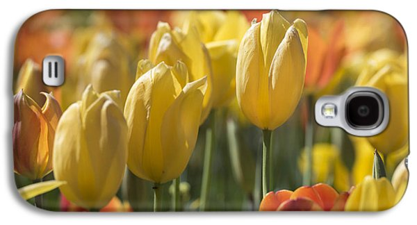 Coming Up Tulips Galaxy S4 Case