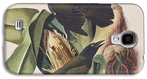 Common Crow Galaxy S4 Case by John James Audubon