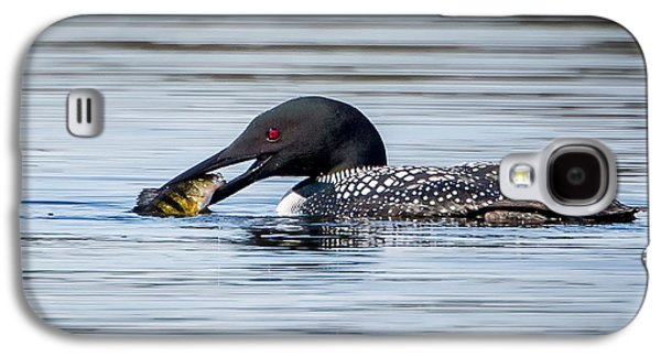 Common Loon Square Galaxy S4 Case by Bill Wakeley