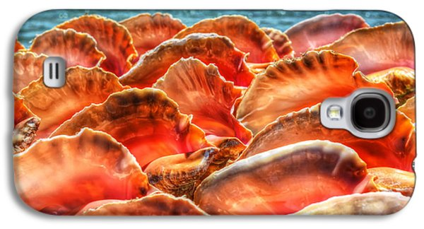 Conch Parade Galaxy S4 Case
