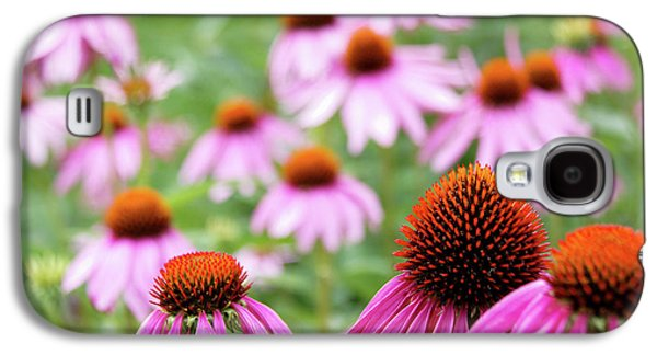 Galaxy S4 Case featuring the photograph Coneflowers by David Chandler