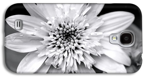 Galaxy S4 Case featuring the photograph Coreopsis Flower Black And White by Christina Rollo