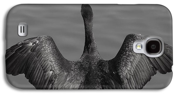 Cormorant 3 Galaxy S4 Case by Todd Sherlock