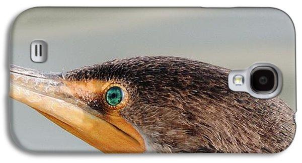 Cormarant 4 Galaxy S4 Case by Todd Sherlock