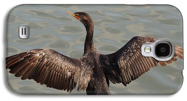 Cormorant1 Galaxy S4 Case by Todd Sherlock