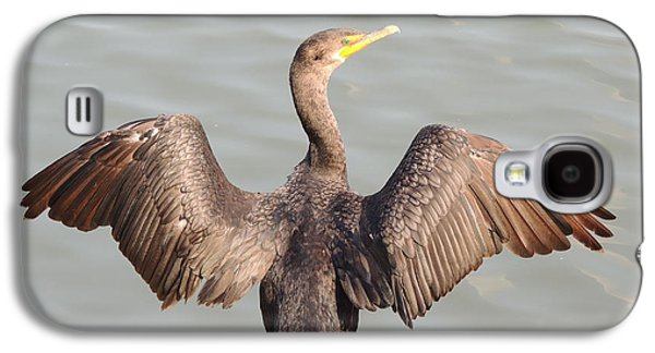Cormorant 2 Galaxy S4 Case by Todd Sherlock