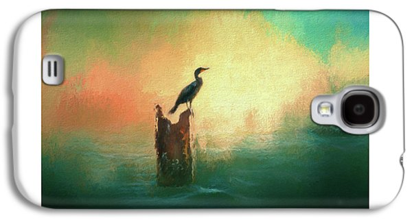 Cormorat Sunset Galaxy S4 Case by Marvin Spates