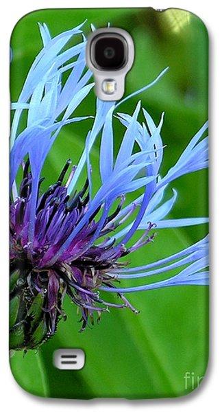 Cornflower Centaurea Montana Galaxy S4 Case by Diane Greco-Lesser