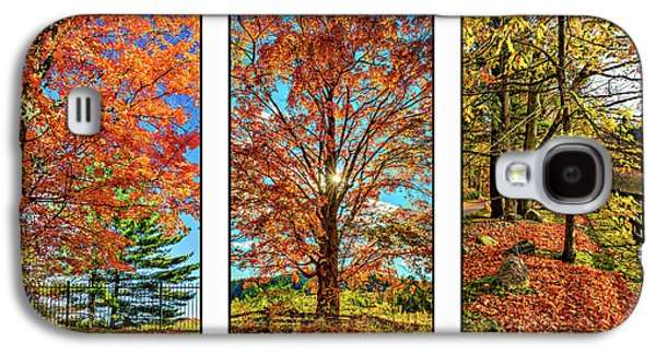 Country Fences Triptych Galaxy S4 Case by Steve Harrington