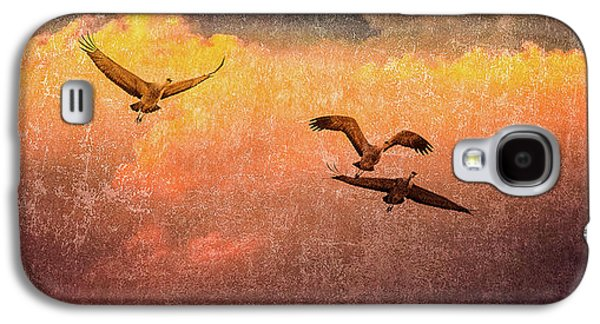 Cranes Lifting Into The Sky Galaxy S4 Case