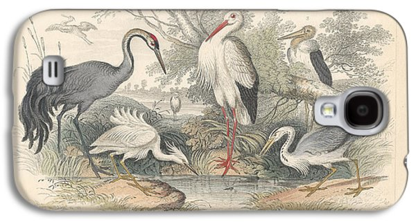 Cranes Galaxy S4 Case by Dreyer Wildlife Print Collections