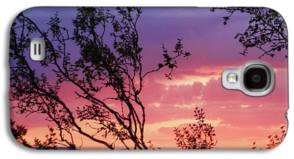 Creosote Sky Galaxy S4 Case by Suzette Kallen