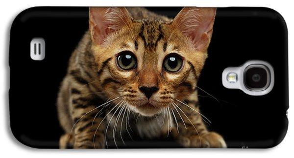 Crouching Bengal Kitty On Black  Galaxy S4 Case by Sergey Taran