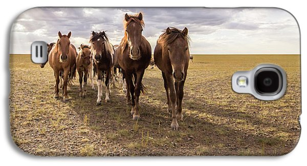 Galaxy S4 Case featuring the photograph Curious Horses by Hitendra SINKAR