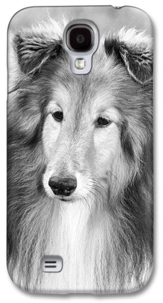 Curious Sheltie Galaxy S4 Case