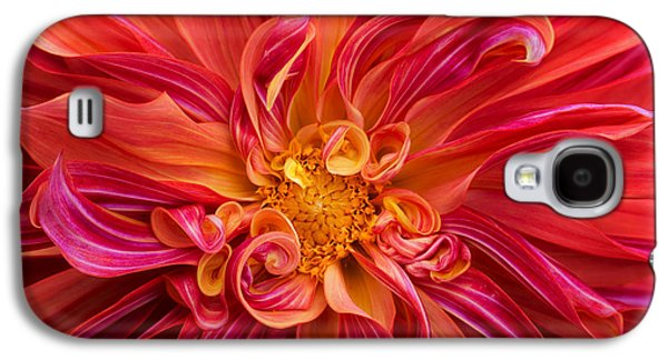 Curls And Curves Galaxy S4 Case