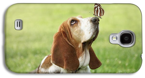 Cute Dog With Butterfly On His Nose Galaxy S4 Case